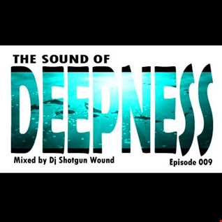 SGW The Sound Of Deepness Episode 009