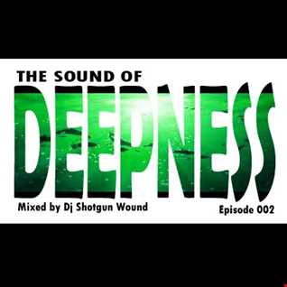 SGW the sound of deepness episode 002