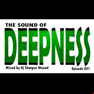 SGW The Sound of Deepness Episode 21