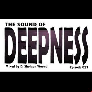 SGW The Sound Of Deepness Episode 23