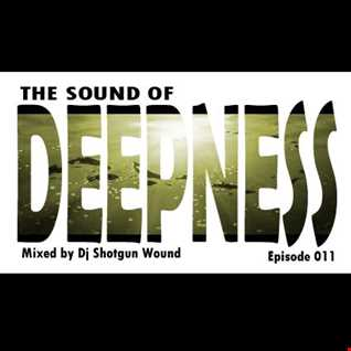 SGW The Sound Of Deepness Episode 011