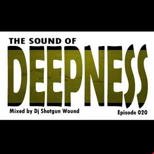 SGW The Sound Of Deepness episode 20