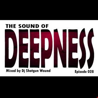 01 SGW The Sound Of Deepness Episode 28