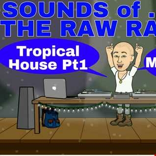 SOUNDS OF THE RAW RAVER - TROPICAL HOUSE PT1 - MIX 005