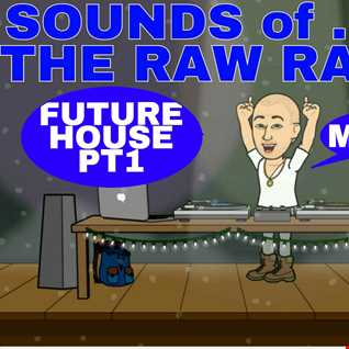 SOUNDS OF THE RAW RAVER - FUTURE HOUSE PT1 - MIX004