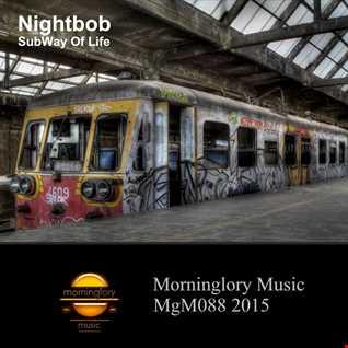 Nightbob Report #259