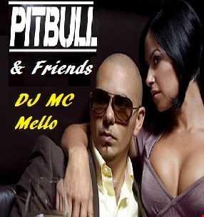 Pitbull & Friends (In Da Mix)