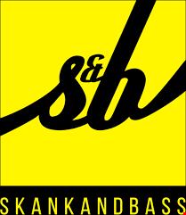 skank and Bass Studio Mix 2019