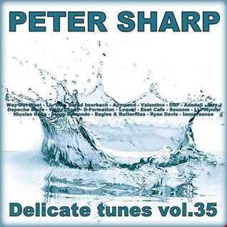 Dj Splash (Peter Sharp)   Delicate tunes vol.35 2018 www.djsplash.hu