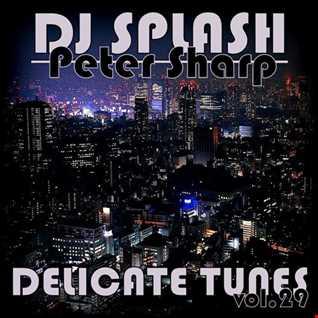 Dj Splash (Peter Sharp)   Delicate tunes vol.29 2017 www.djsplash.hu