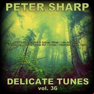 Dj Splash (Peter Sharp)   Delicate tunes vol.36 2018 www.djsplash.hu
