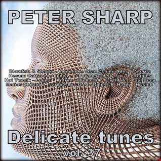 Dj Splash (Peter Sharp)   Delicate tunes vol.37 2019 www.djsplash.hu