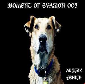 Moment of Evasion 002