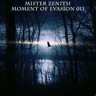 Mister Zenith -  Moment of Evasion 011