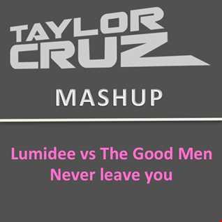 Lumidee - Never leave you  (TAYLOR CRUZ vs The Good Men Mash)