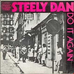 Steely Dan - Do It Again remix