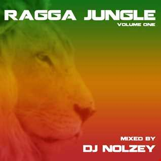 Ragga, Jungle Mix Session Vol. 1 2016 (Nolzey)