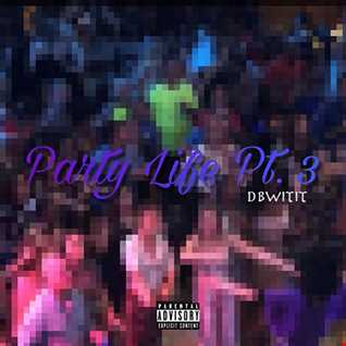 DbWiTiT - Party Life pt. 3