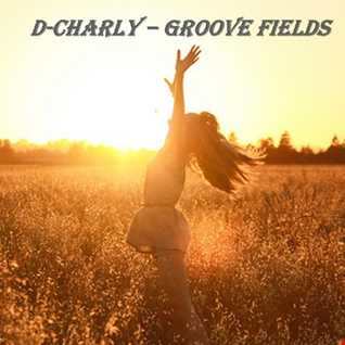 Groove Fields