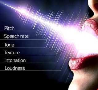 vocal set