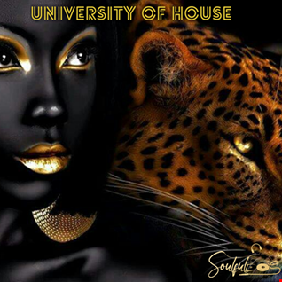 University of HOUSE ( LESSON 03: Afro House )