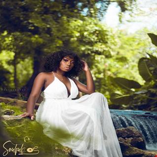 Soulful Reggae Vol.11   MEMORIES