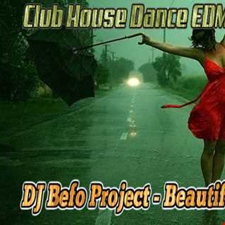 DJ Befo Project   Beautiful Life