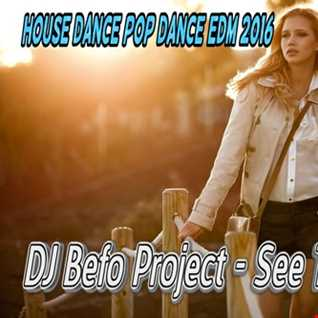 DJ Befo Project   See The Lights