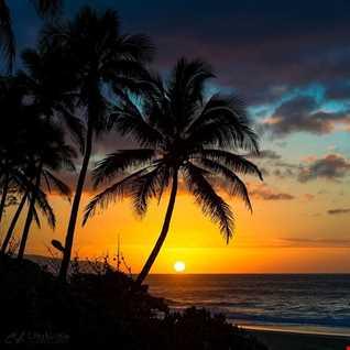 AlohaState Breaks Pt 1 (5 4 15)