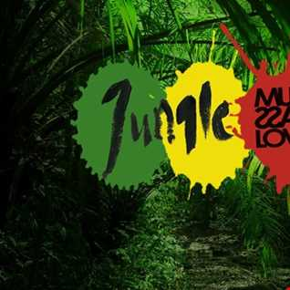 Jungle drum & bass lover #001