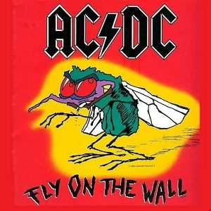 AC⚡DC  -  Fly on the wall