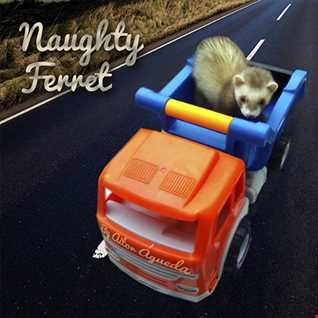 Naughty Ferret (by Aitor Águeda)