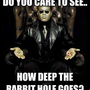 Going Deep Into The Rabbit Hole