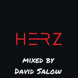 Herz@ - mixed by David Salow 29-08-2015