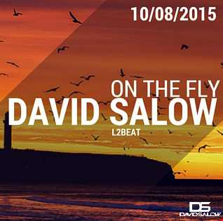 On The Fly - mixed by David Salow 10-08-2015