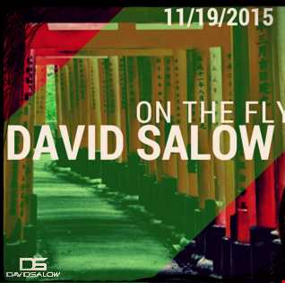 On The Fly - mixed by David Salow 11-19-2015