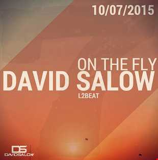 On The Fly - mixed by David Salow 11-07-2015