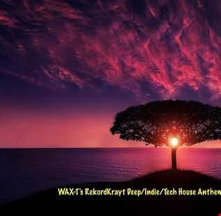 WAX T's RekordKrayt Deep/Indie/Tech House Anthems #5 (February 22, 2020')
