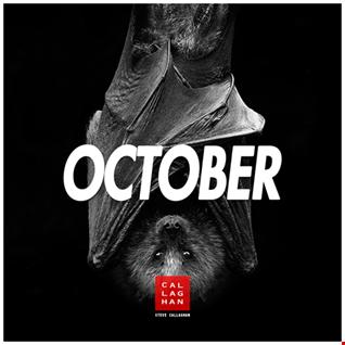 Steve Callaghan - October Mini Mix [2017]