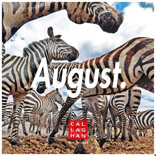 August Mini-Mix [2016]