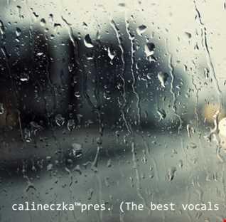 calineczka™pres. (The best vocals in stormy weather) VA