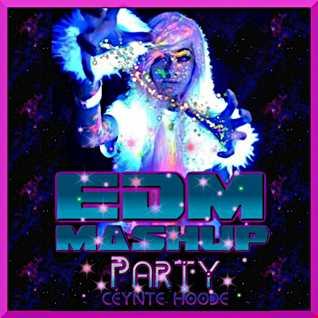 EDM Mashup Party