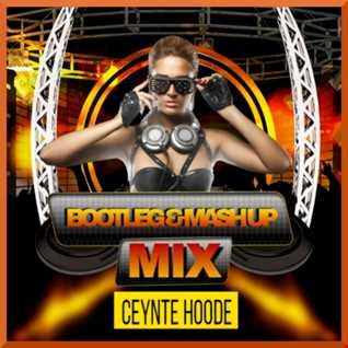 EDM Bootleg & Mashup Mix