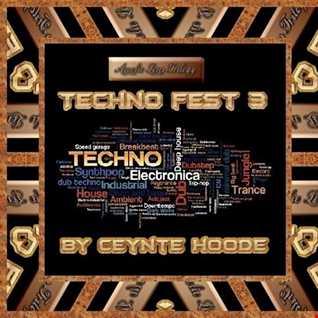Techno Fest 3