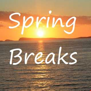 Spring Breaks   One Hour Chill (Live Mix)