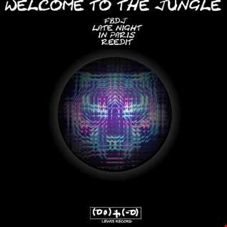 MERCER & ALVARO   WELCOME TO THE JUNGLE  ( FBDJ FRENCH LATE NIGHT REEDIT )