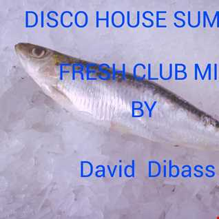 Disco House Summer (Fresh Club Mix)