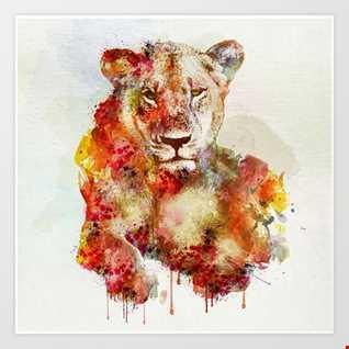 Zedd & Kesha vs. Bon Jovi (True Colors Alive) - Mashup