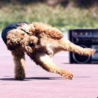 Run DMC & Beastie Boys vs. The Knocks (Classic Disco Breakin') - Mashup