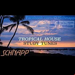 Tropical House: Study Tunes